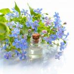 Os segredos da aromaterapia