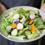 13 Dicas para retomar os bons hábitos alimentares depois das férias
