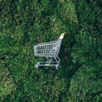 9 Dicas para uma alimentação e compras (mais) conscientes