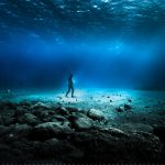 Dar de volta ao Oceano e fazer parte da sua regeneração