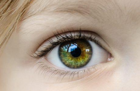 visão das crianças