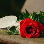 5 Mitos sobre o luto